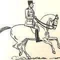 guy arnoux cheval